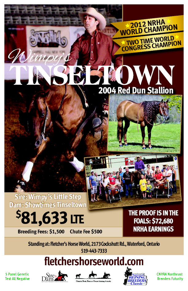 2016 Wimpy Stallion Brochure